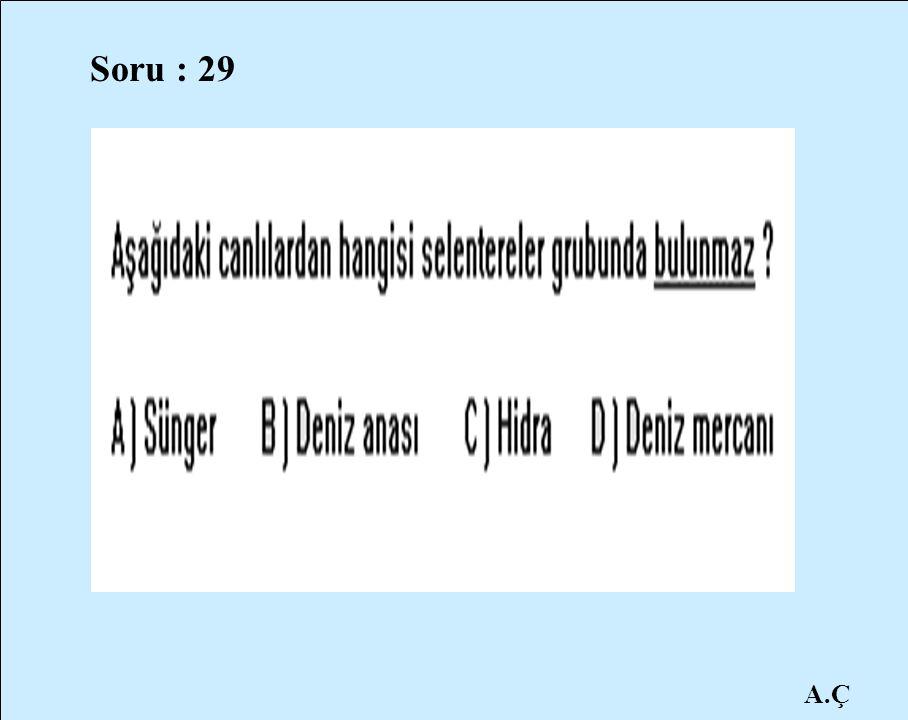 Soru : 29 A.Ç