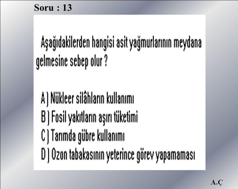 Soru : 13 A.Ç