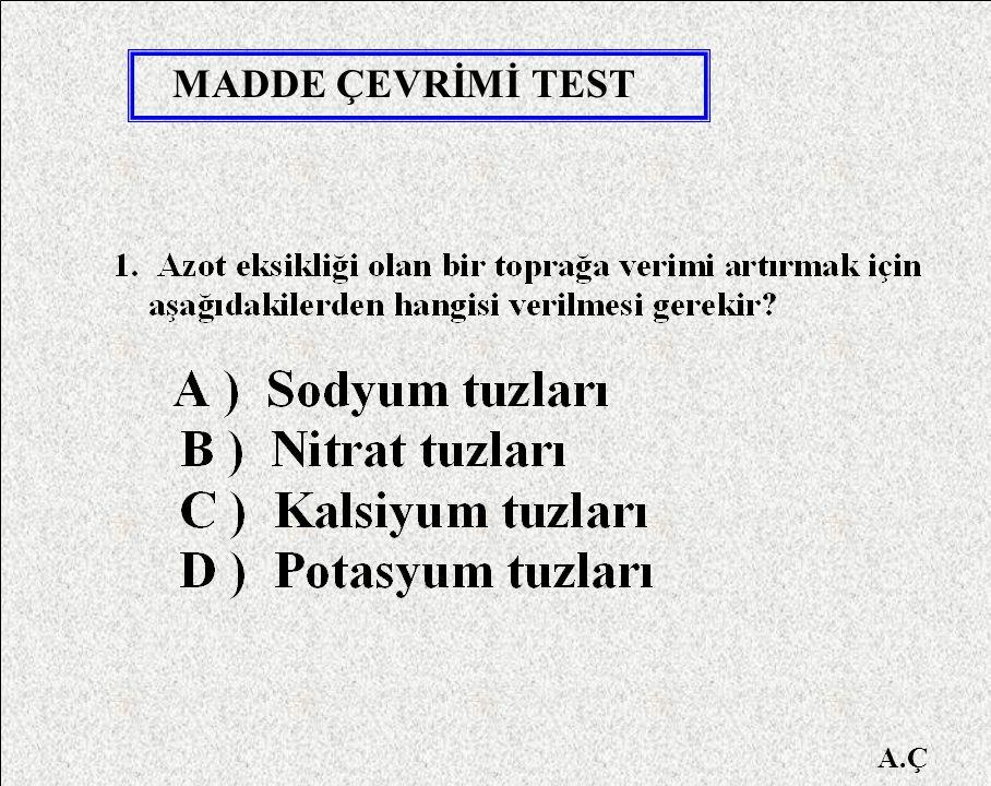 MADDE ÇEVRİMİ TEST A.Ç