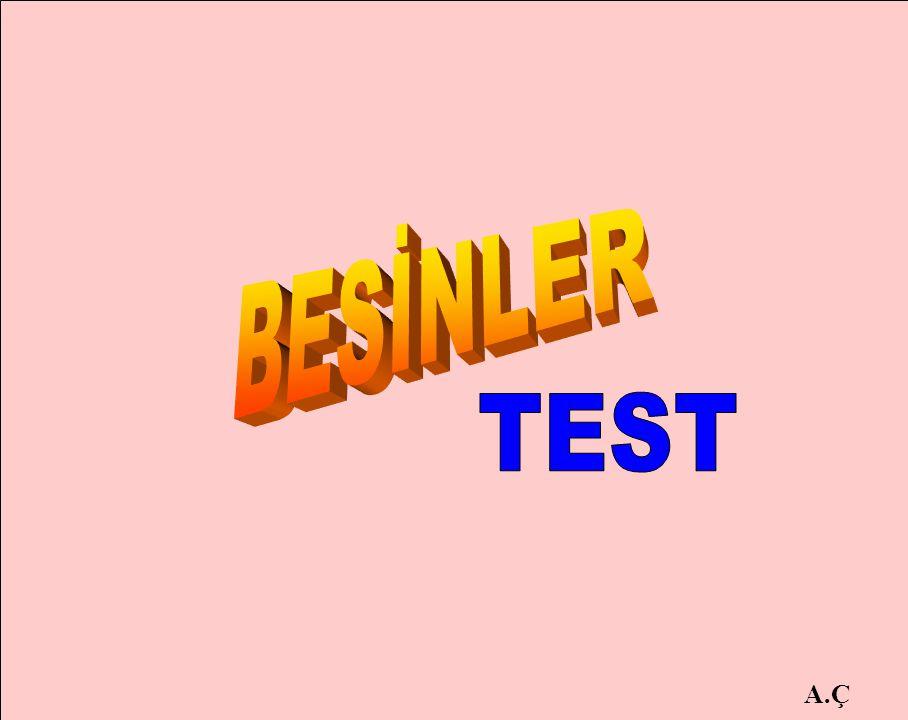 BESİNLER TEST A.Ç