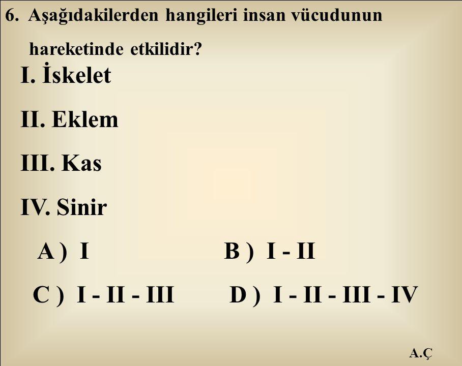 C ) I - II - III D ) I - II - III - IV