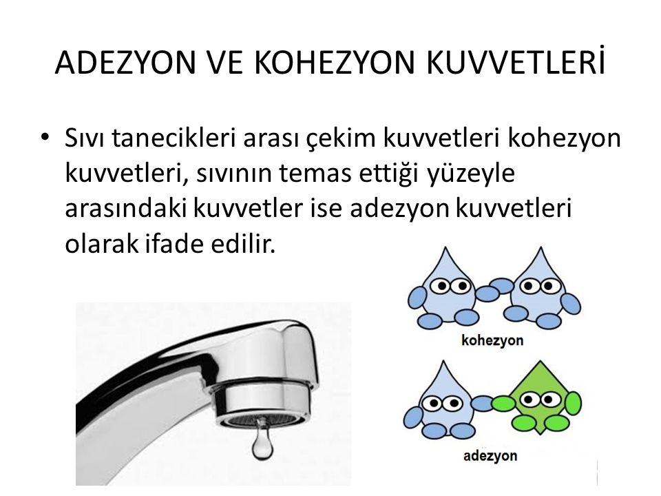 ADEZYON VE KOHEZYON KUVVETLERİ