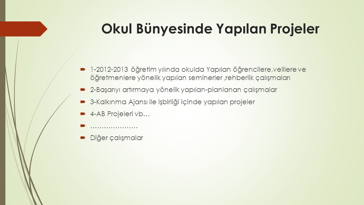 Okul Bünyesinde Yapılan Projeler