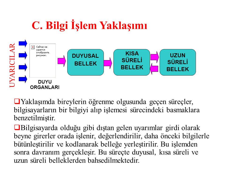 C. Bilgi İşlem Yaklaşımı