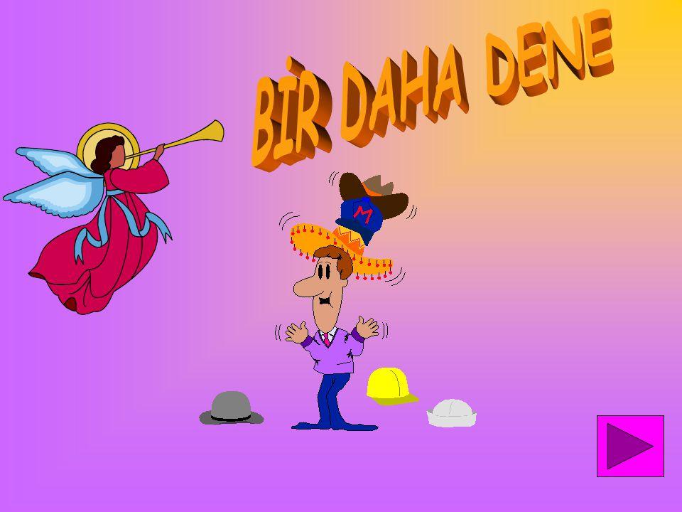BİR DAHA DENE