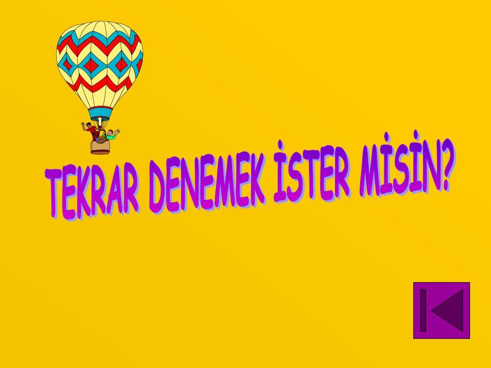 TEKRAR DENEMEK İSTER MİSİN