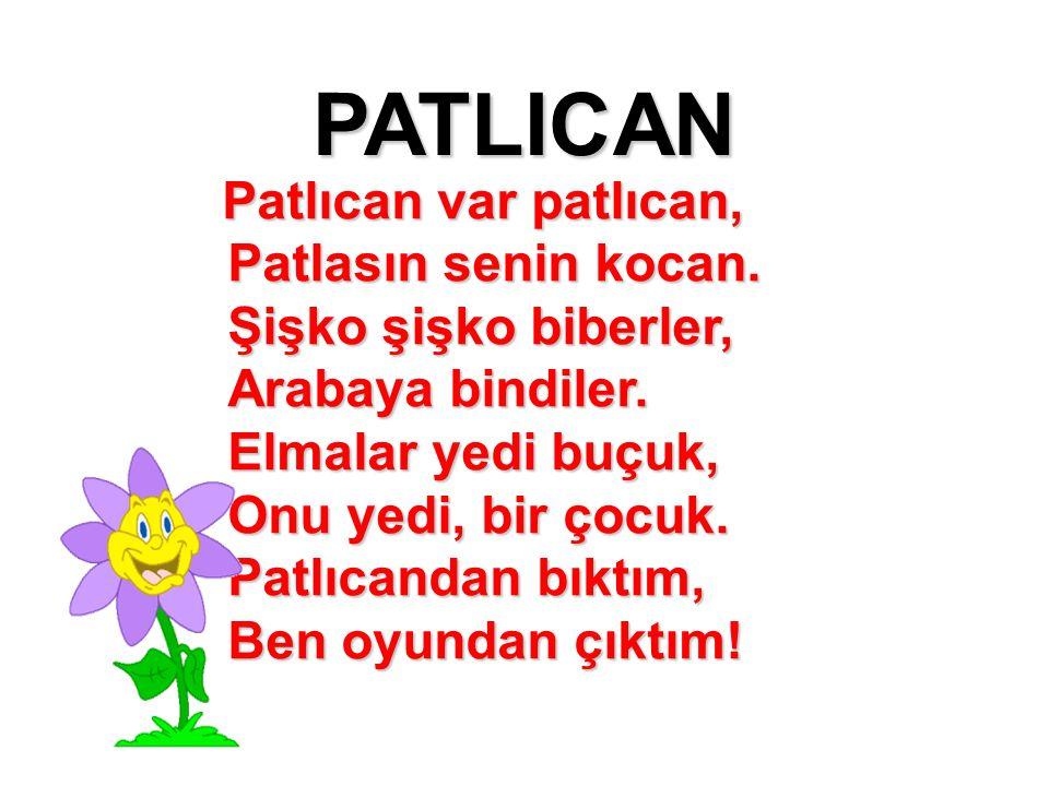 PATLICAN