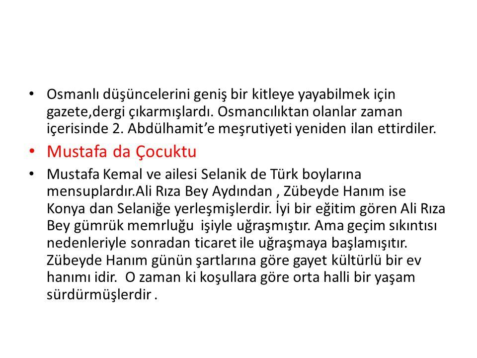 Osmanlı düşüncelerini geniş bir kitleye yayabilmek için gazete,dergi çıkarmışlardı. Osmancılıktan olanlar zaman içerisinde 2. Abdülhamit'e meşrutiyeti yeniden ilan ettirdiler.