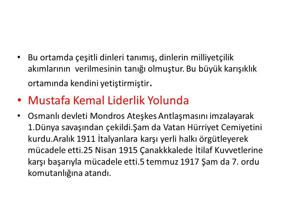 Mustafa Kemal Liderlik Yolunda