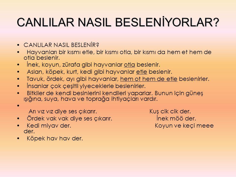 CANLILAR NASIL BESLENİYORLAR