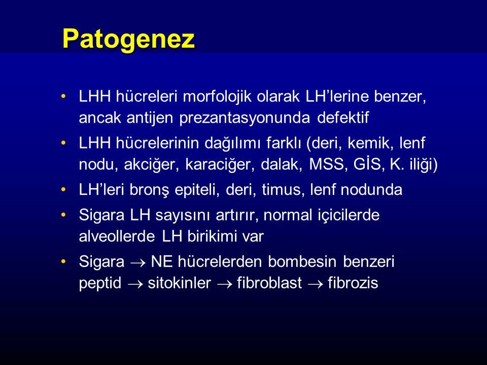 Patogenez LHH hücreleri morfolojik olarak LH'lerine benzer, ancak antijen prezantasyonunda defektif.