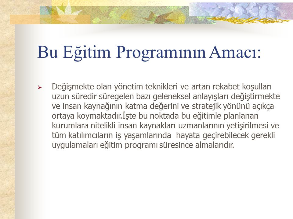 Bu Eğitim Programının Amacı: