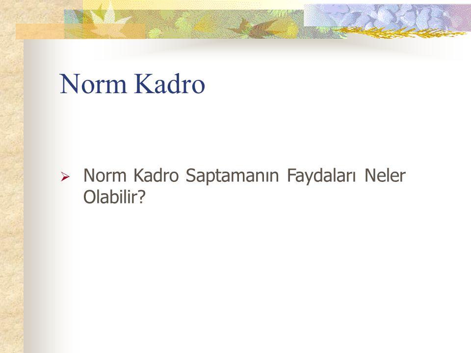 Norm Kadro Norm Kadro Saptamanın Faydaları Neler Olabilir