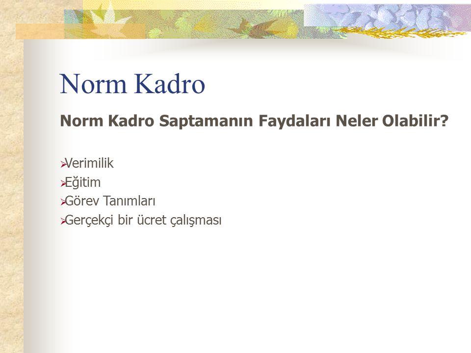 Norm Kadro Norm Kadro Saptamanın Faydaları Neler Olabilir Verimilik