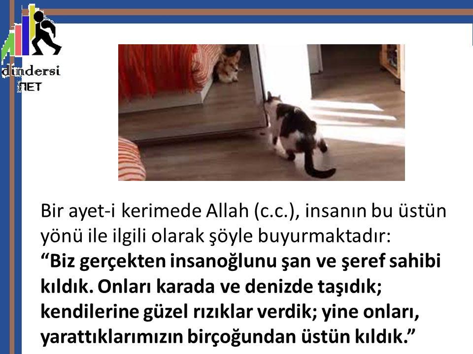 Bir ayet-i kerimede Allah (c. c
