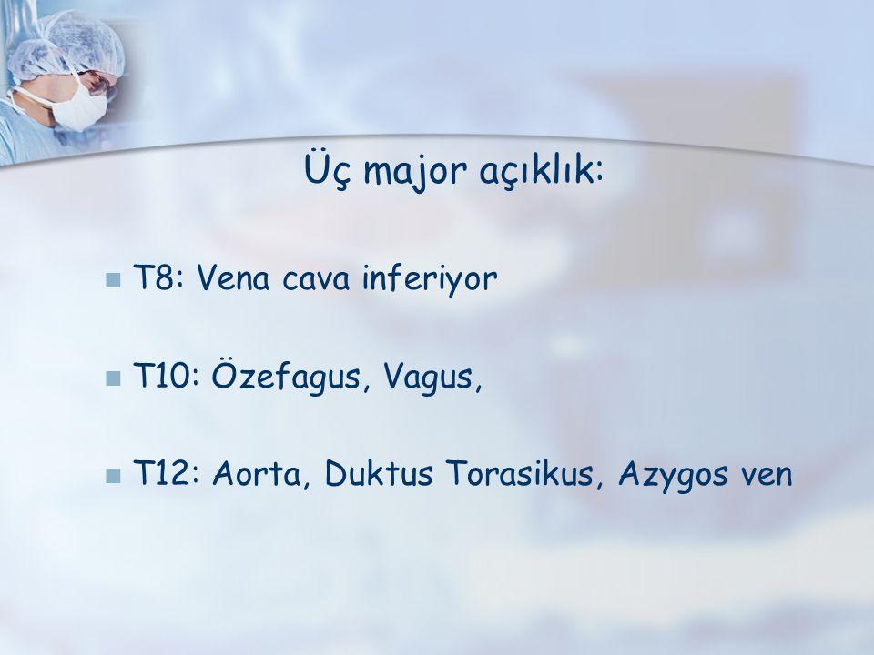 Üç major açıklık: T8: Vena cava inferiyor T10: Özefagus, Vagus,