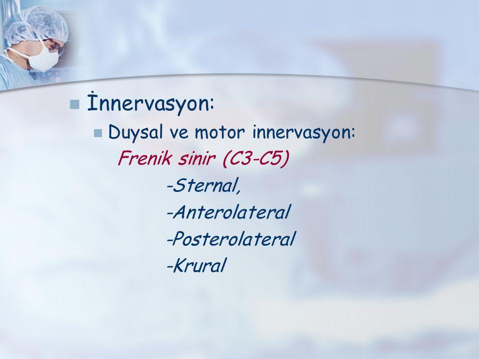 İnnervasyon: Duysal ve motor innervasyon: Frenik sinir (C3-C5)