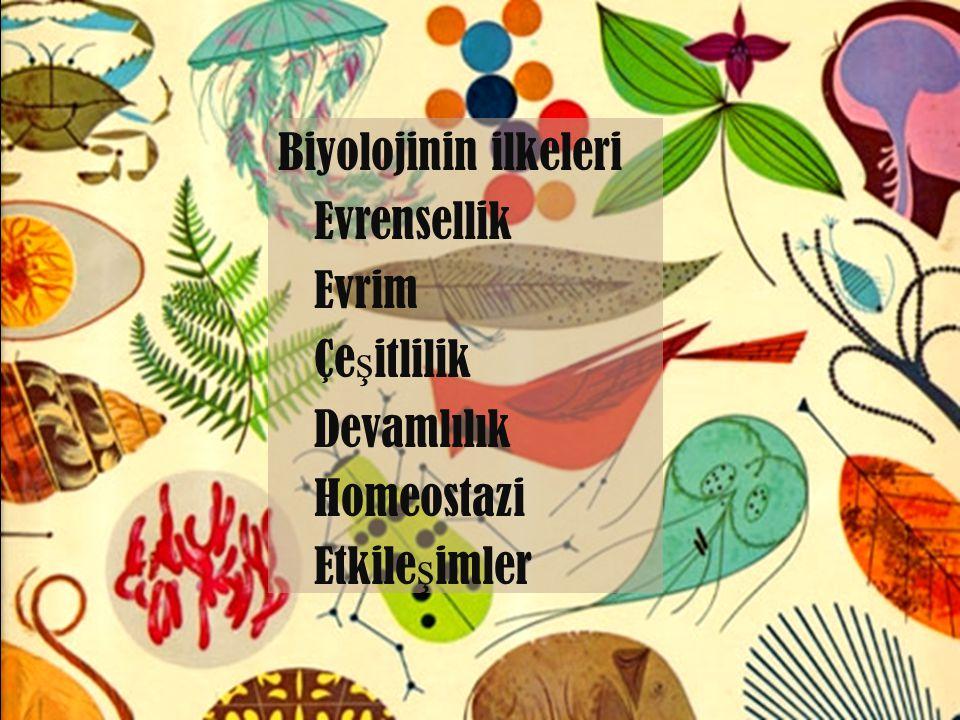 Biyolojinin ilkeleri Evrensellik Evrim Çeşitlilik Devamlılık Homeostazi Etkileşimler