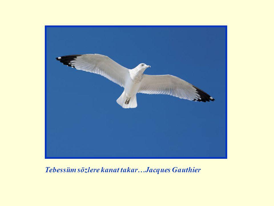 Tebessüm sözlere kanat takar…Jacques Gauthier