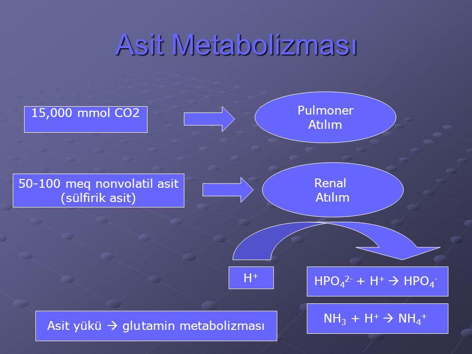 Asit yükü  glu tamin metabolizması