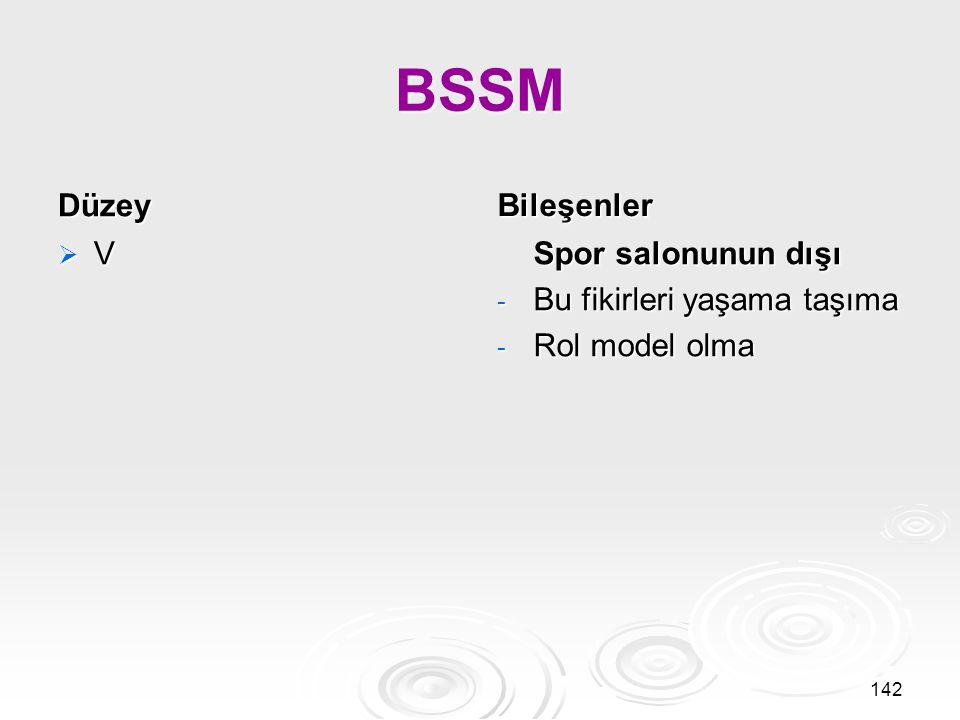 BSSM Düzey Bileşenler V Spor salonunun dışı Bu fikirleri yaşama taşıma