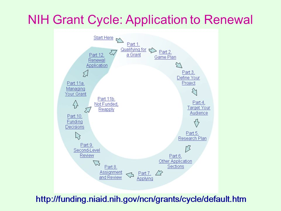 NIH Grant Cycle: Application to Renewal