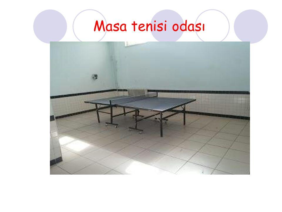 Masa tenisi odası