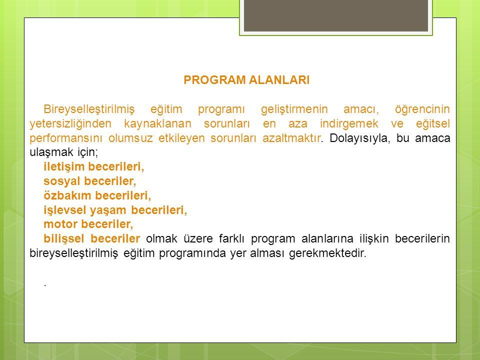 PROGRAM ALANLARI