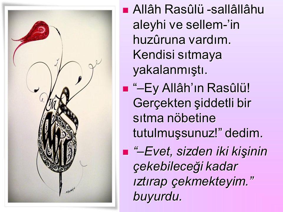 Allâh Rasûlü -sallâllâhu aleyhi ve sellem-'in huzûruna vardım