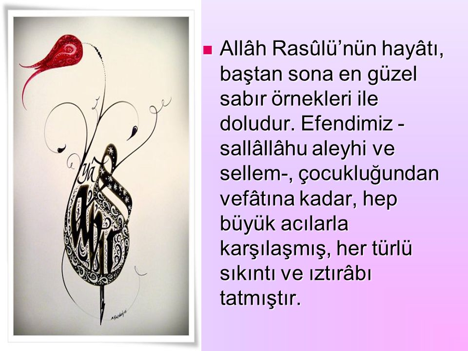 Allâh Rasûlü'nün hayâtı, baştan sona en güzel sabır örnekleri ile doludur.