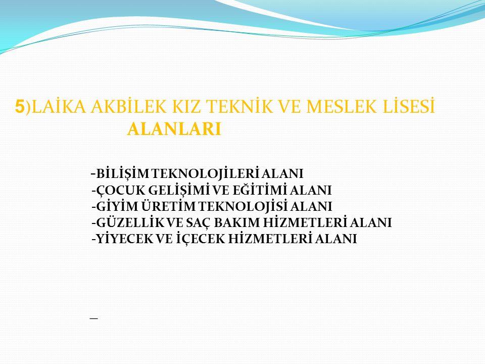 ALANLARI -BİLİŞİM TEKNOLOJİLERİ ALANI _