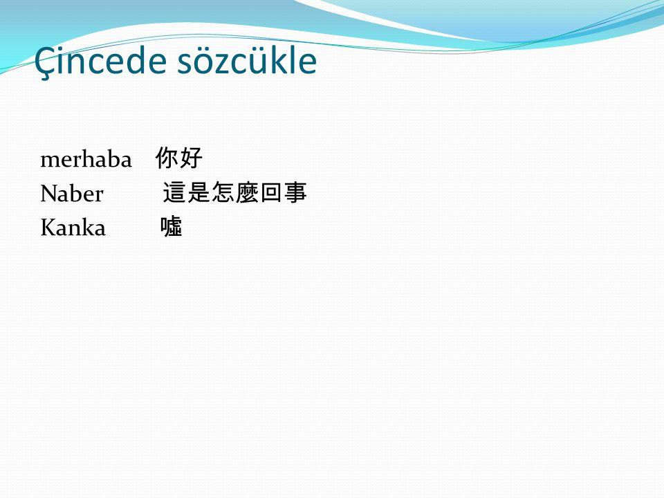 Çincede sözcükle merhaba 你好 Naber 這是怎麼回事 Kanka 噓