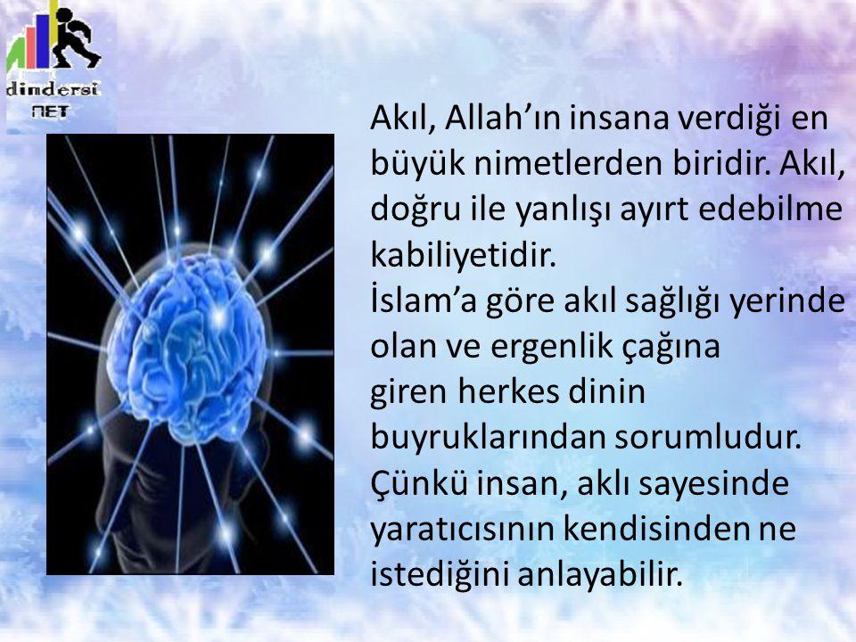 Akıl, Allah'ın insana verdiği en büyük nimetlerden biridir