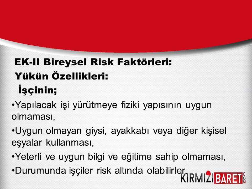 EK-II Bireysel Risk Faktörleri:
