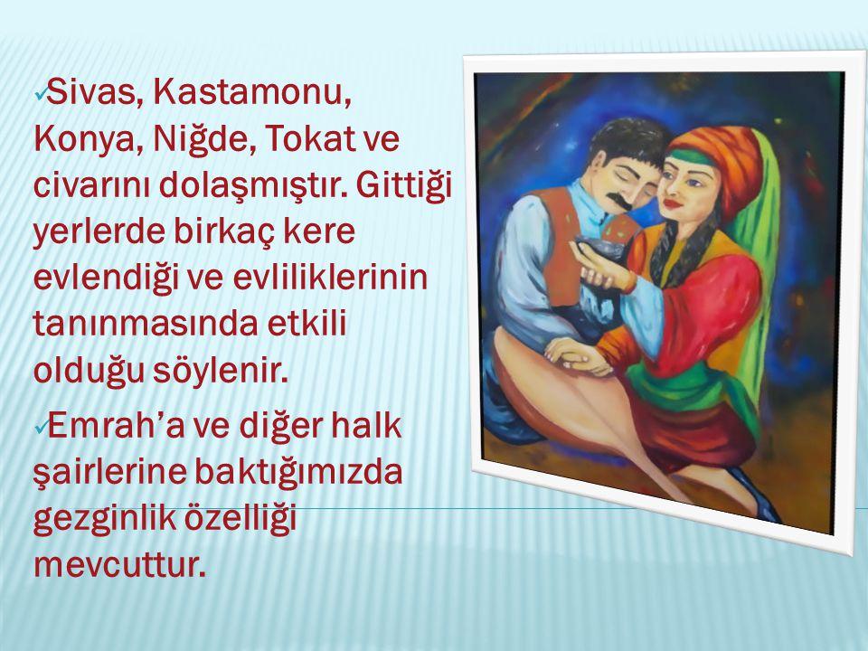Sivas, Kastamonu, Konya, Niğde, Tokat ve civarını dolaşmıştır