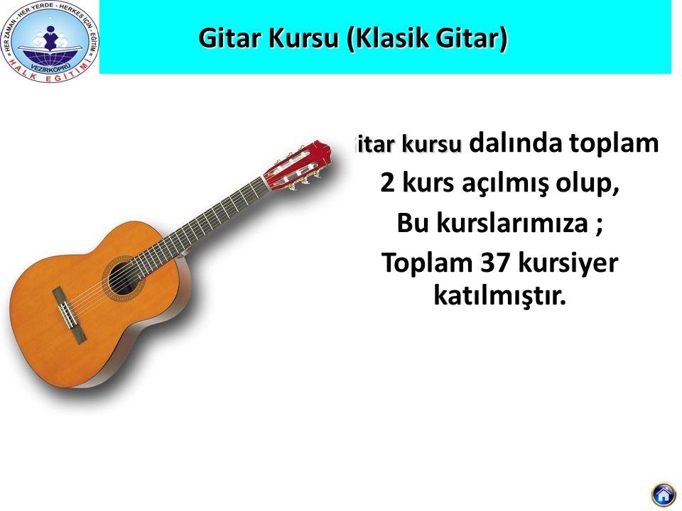 Gitar Kursu (Klasik Gitar)