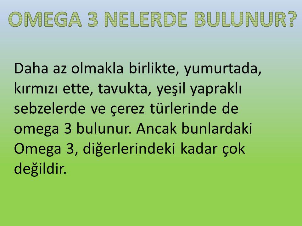 OMEGA 3 NELERDE BULUNUR