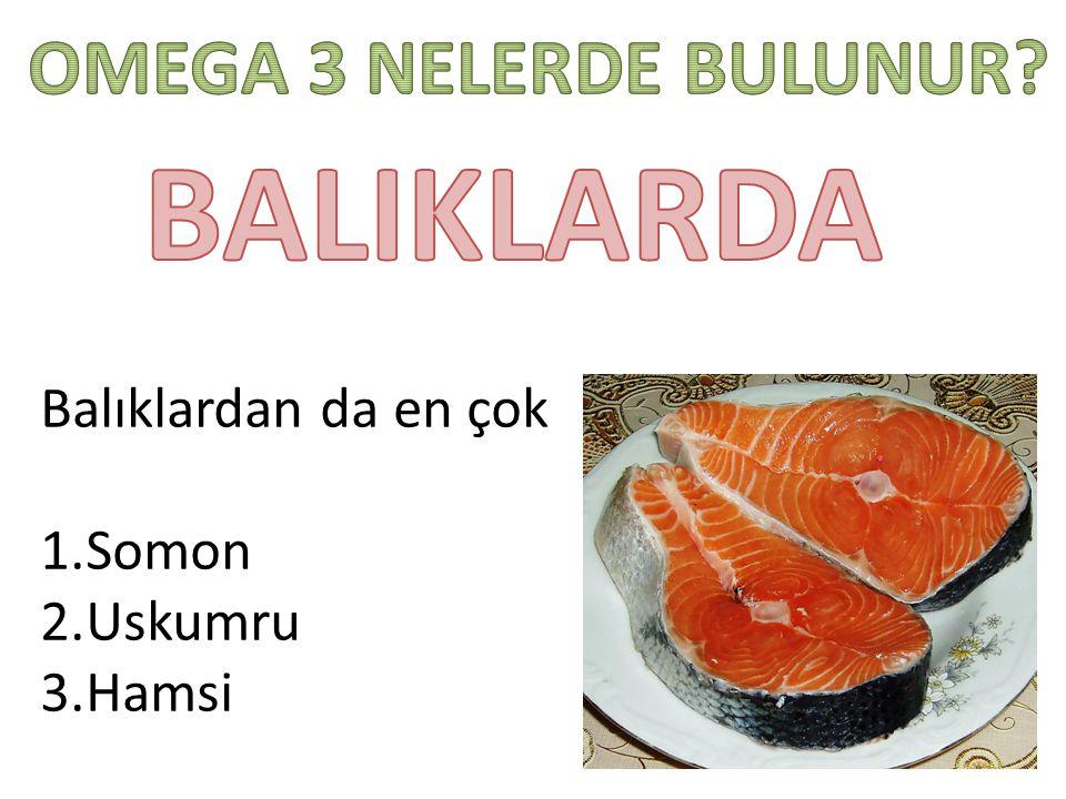 BALIKLARDA OMEGA 3 NELERDE BULUNUR Balıklardan da en çok Somon