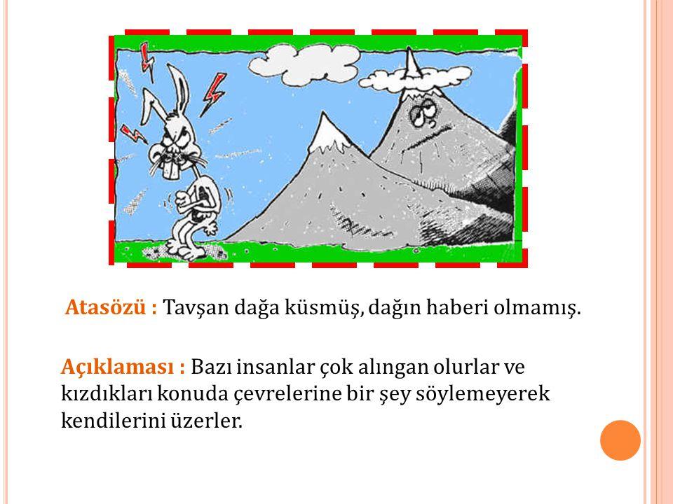 Atasözü : Tavşan dağa küsmüş, dağın haberi olmamış