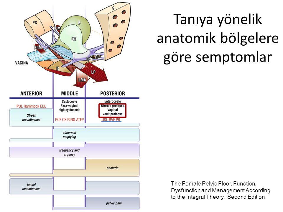 Tanıya yönelik anatomik bölgelere göre semptomlar
