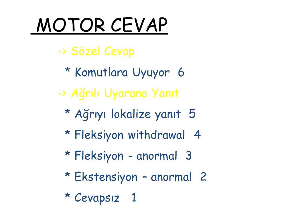 MOTOR CEVAP -> Sözel Cevap * Komutlara Uyuyor 6
