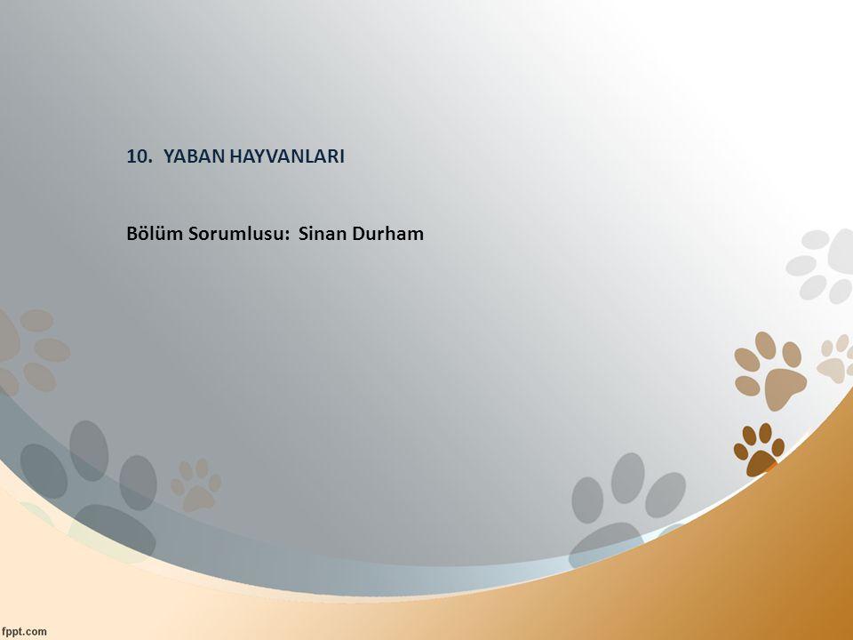10. YABAN HAYVANLARI Bölüm Sorumlusu: Sinan Durham