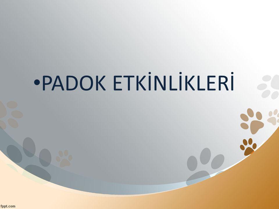 PADOK ETKİNLİKLERİ