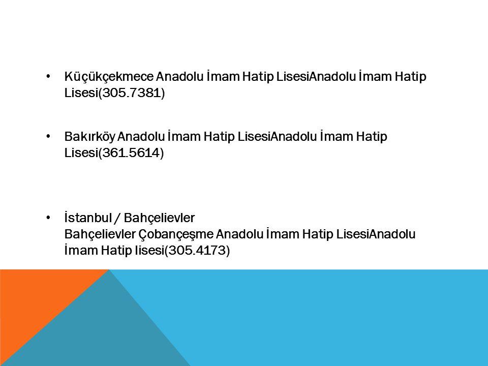 Küçükçekmece Anadolu İmam Hatip LisesiAnadolu İmam Hatip Lisesi(305