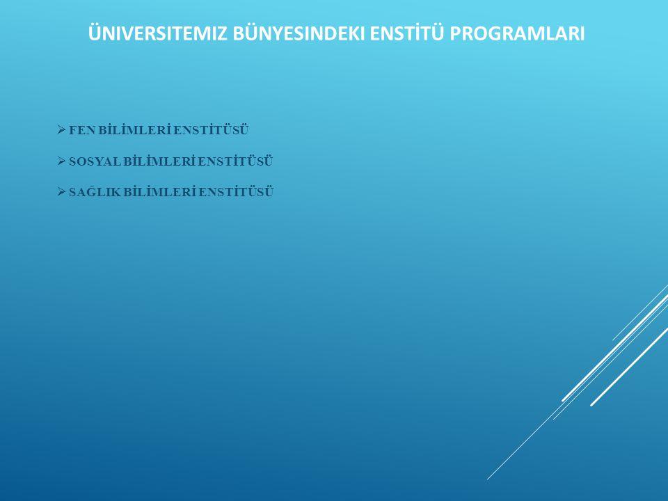 Üniversitemiz Bünyesindeki ENSTİTÜ PROGRAMLARI