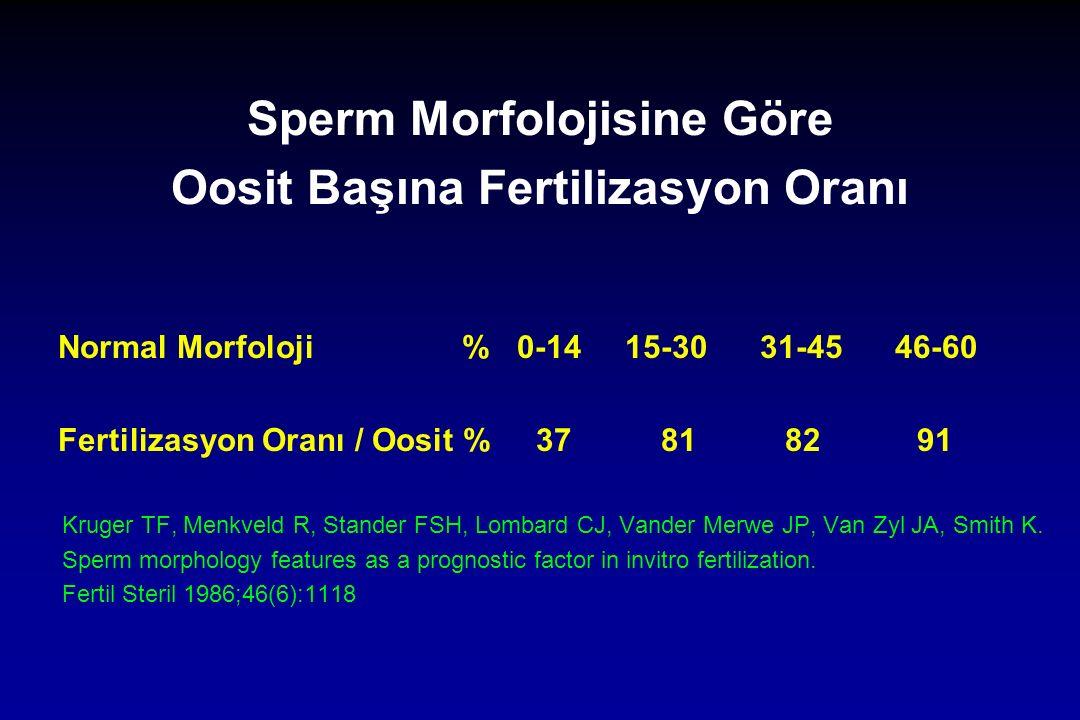 Sperm Morfolojisine Göre Oosit Başına Fertilizasyon Oranı