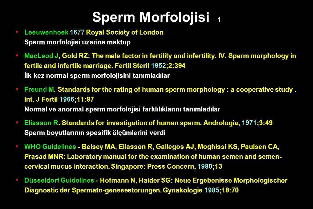 Sperm Morfolojisi - 1
