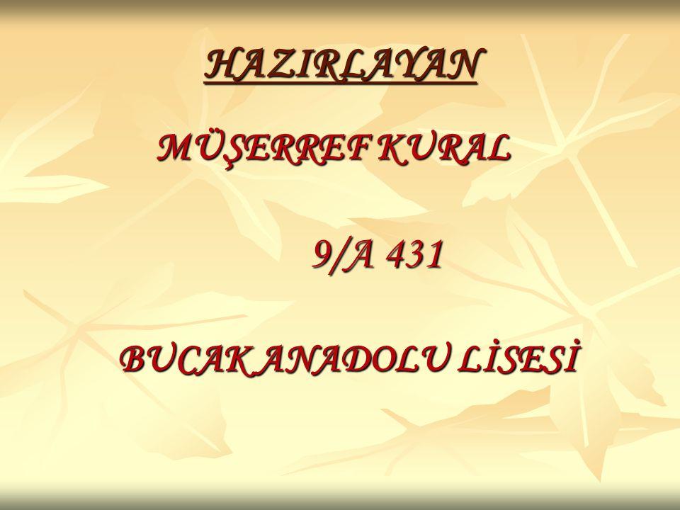 HAZIRLAYAN MÜŞERREF KURAL 9/A 431 BUCAK ANADOLU LİSESİ