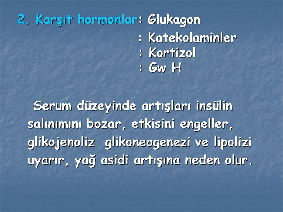 2. Karşıt hormonlar: Glukagon