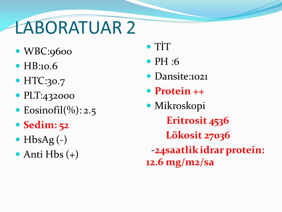 LABORATUAR 2 TİT WBC:9600 PH :6 HB:10.6 Dansite:1021 HTC:30.7